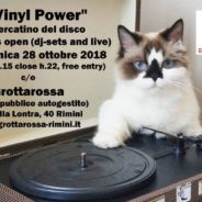 VINYL POWER mercatino del disco + decks open
